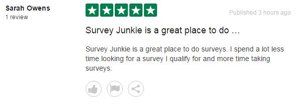 What is Survey Junkie? - BenjisDad com